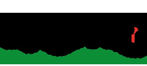 Cygnus Mexico